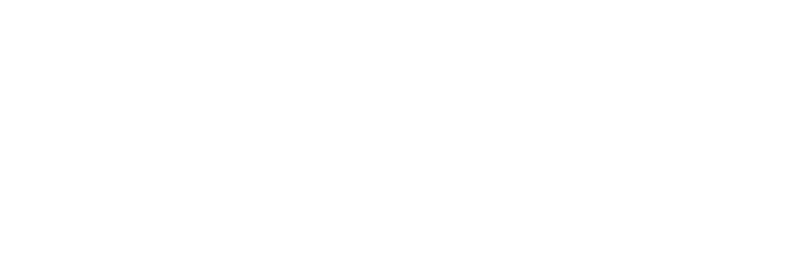 This is the logo of Aspioneer BizByts Marketing Pvt. Ltd.